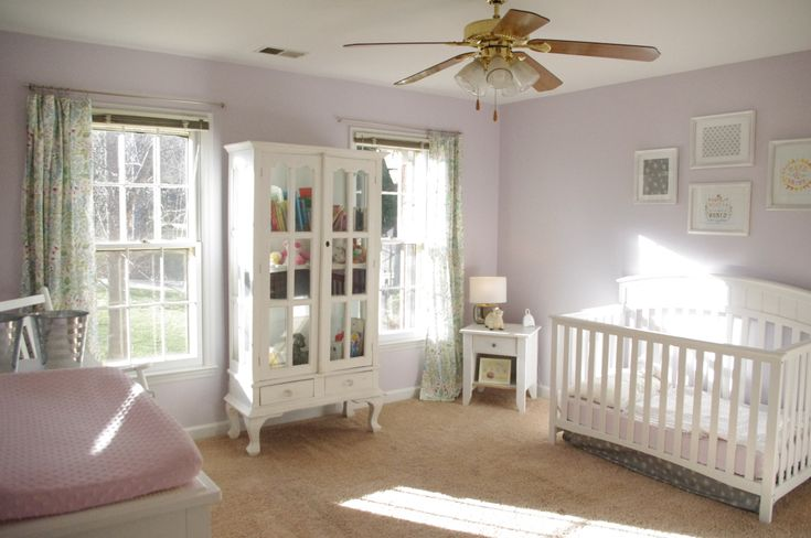 Sherwin Williams Silver Peony Home Wall Colour Room