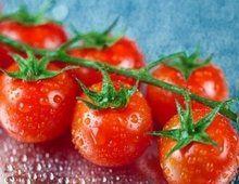 Этот сорт томата станет вашим любимым