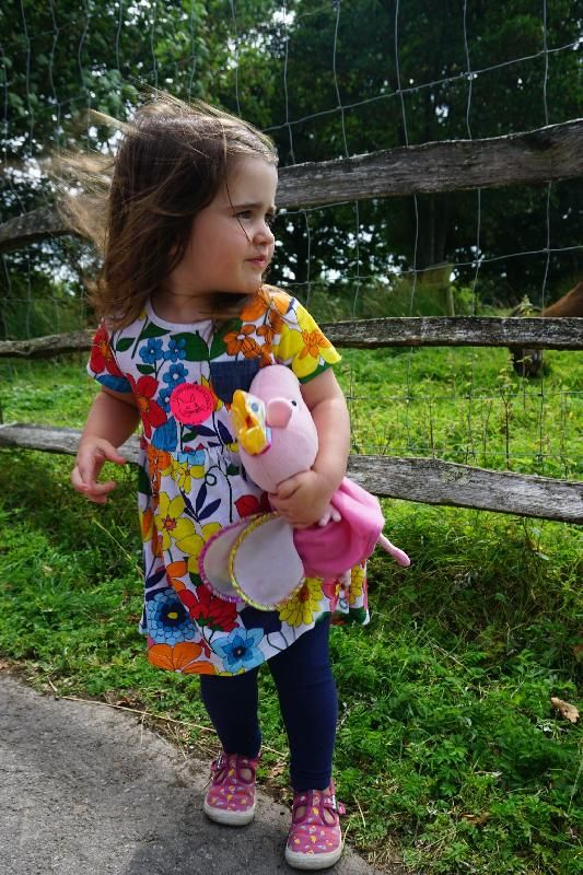 Lost on 26 Aug. 2016 @ Brighton. We've lost Peppa on the way home from the…