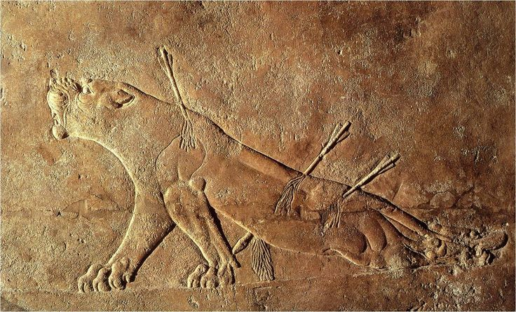 Assyrian relief sculpture of a dying lion from the palace