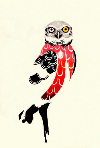 absolutely smart owl items.  31 best Owl images on Pinterest Owls and Tawny owl