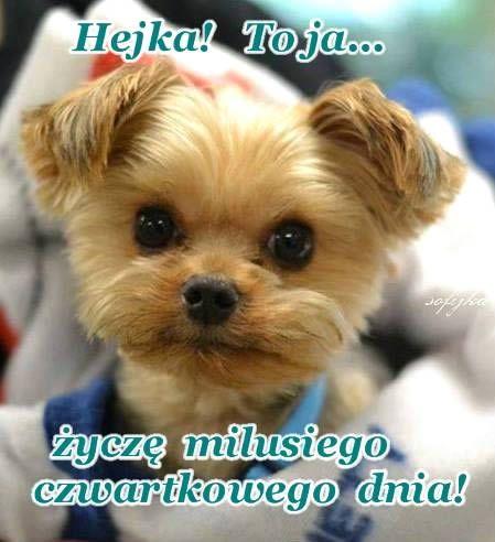 Hejka! To ja... życzę milusiego czwartkowego dnia! #czwartek