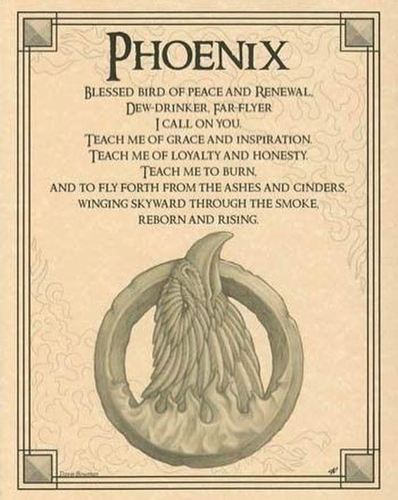 #witch #witches #witchcraft #innerme #innerpeace #gods #goddess #life #love #yogi #inspire #inspiration #mother #maiden #crone #mothermaidencrone #herbs #magick #vikings #stars #moon #sun #spells #greenwitch #tarotcards #tarot #beltane #mabon #samhain