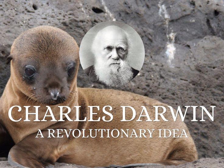 Charles Darwin: A Revolutionary Idea, created by Rebecca Stay