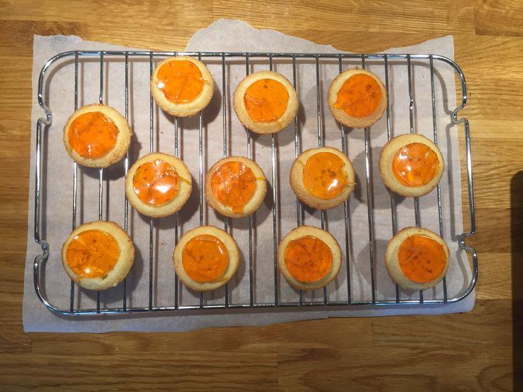 Homemade Jaffa cakes. Work in progress.