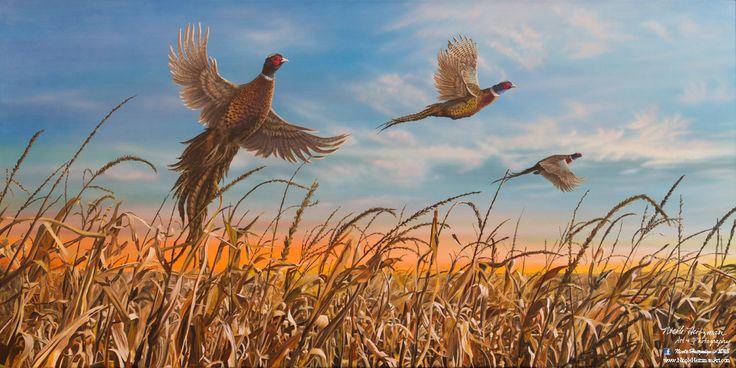 Nicole Heitzman había pintado esta escena de campo de maíz de hermosa caída de inspiraciones del faisán de Dakota del sur muchos cazas. Se titula Cosecha de Dakota. La paleta de otoño ofrece una variedad de colores cálidos que atraer al espectador como si estuvieran realmente en las llanuras de Dakota del sur.  La pintura original se crea con acrílicos sobre lienzo. Este 32 x 16 x 3/4 imagen es una impresión de Giclee de la lona de edición limitada. Hay 300 impresiones en esta edición…