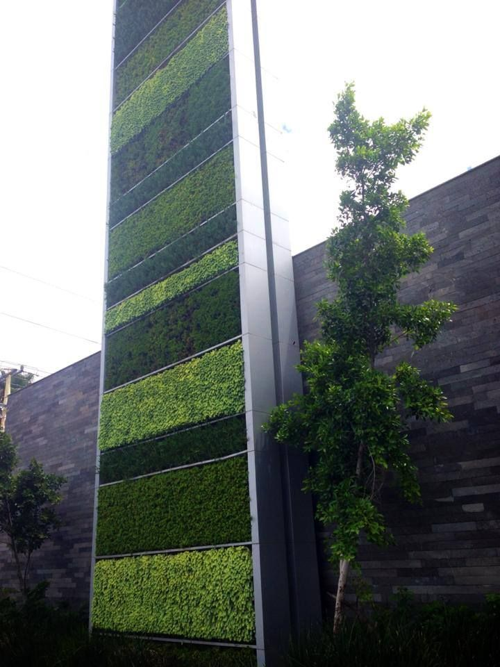 17 best images about the green facade on pinterest for Muro verde artificial