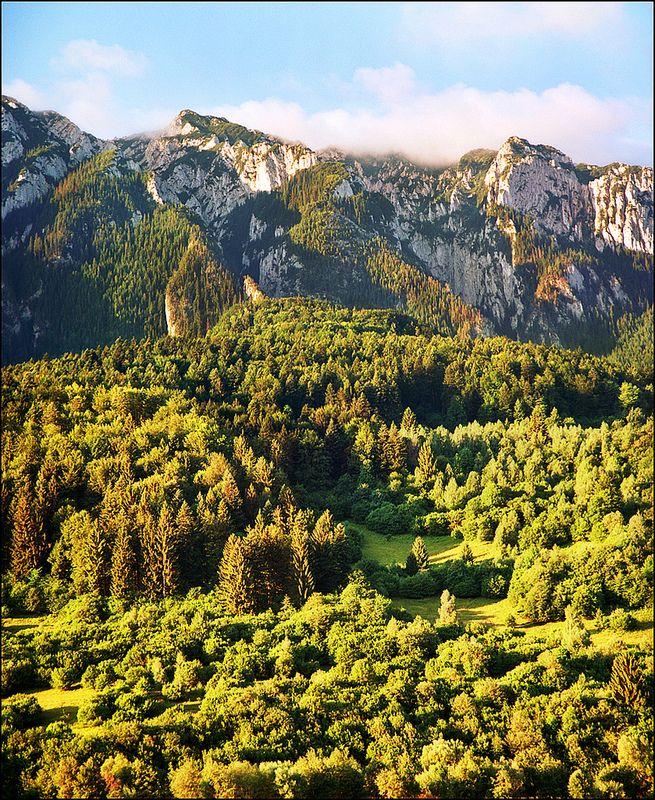 PIATRA CRAIULUI National Park, Southern Carpathians, Romania.