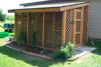 Rabbit Shed made from lattice