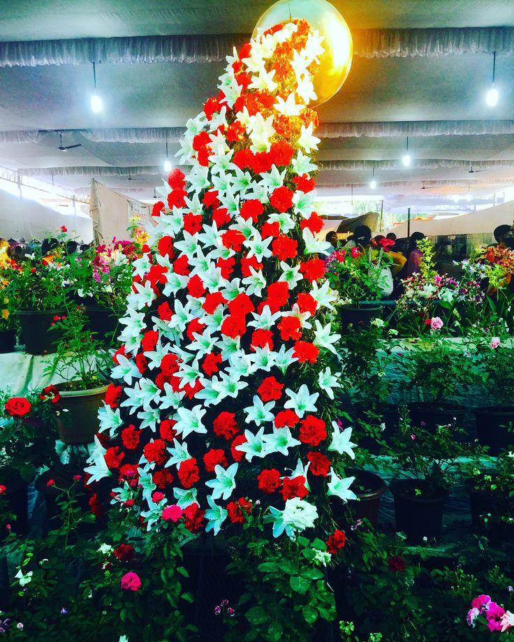 Guruvayoor#guruvayoor_temple#guruvayoor_utsavam2016#festival#god's_own_country#India#thrissur#myclick#iphoneclick#sonu.v.sagar#pushpolsavam#flower_show#flowers