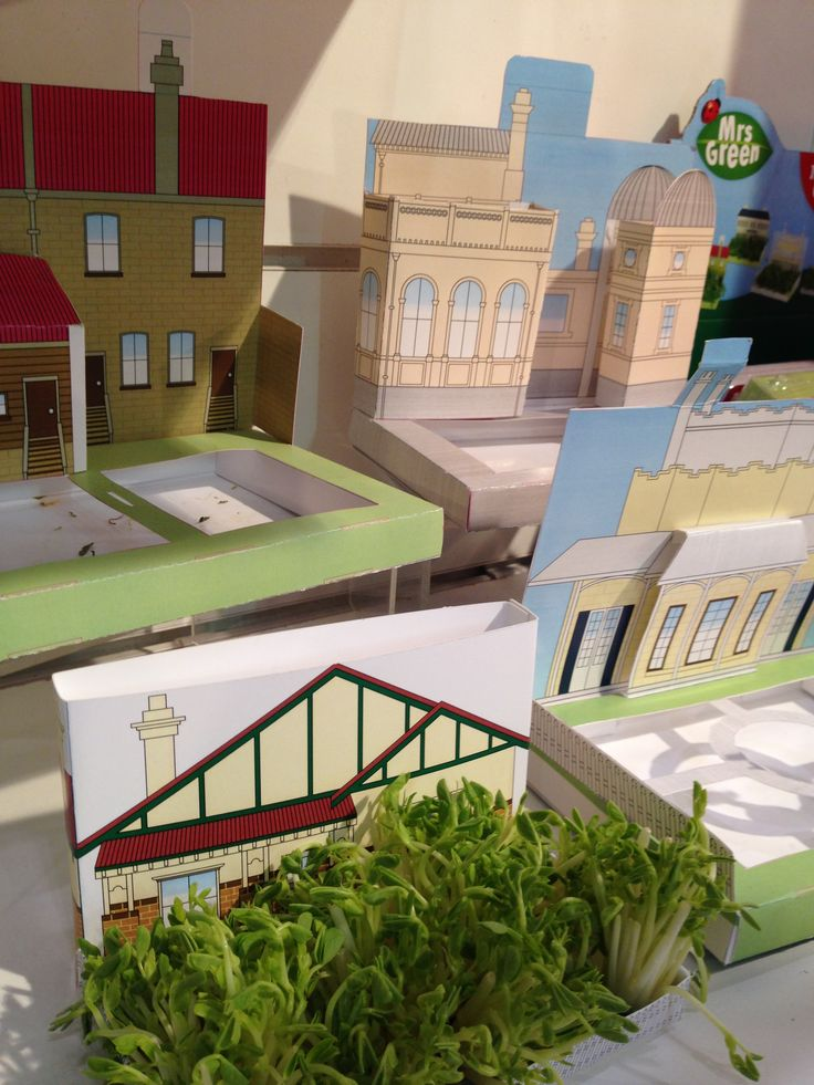 What do you think about these? They are little paper houses that you grow sprouts in #toyfair