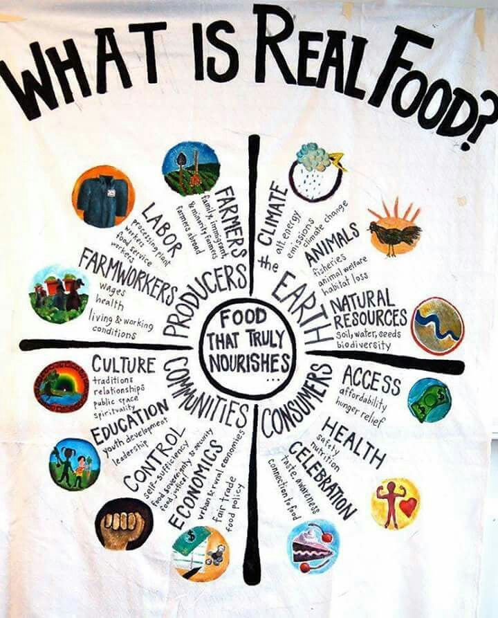 what is real food