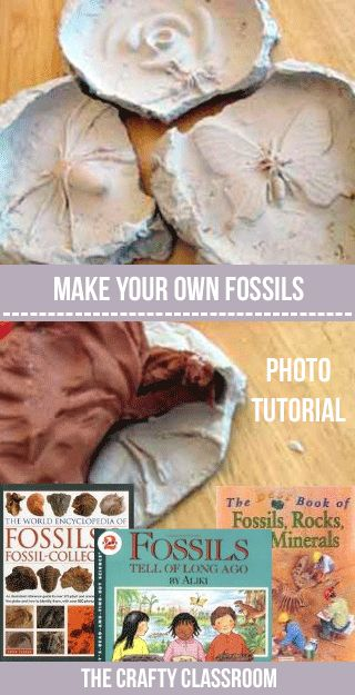 """Making fossils is great fun, and really not as """"troublesome,"""" or """"messy"""" as you might think! This craft really drives home the point in how fossils are formed and leaves children with a lasting impression!! Materials: Plaster of Paris Tinfoil Small objectsto fossilize! Kids Read About: Dinosaurs and the Bible Parents Read About: Dinosaurs and …"""