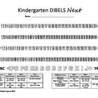 DIBELS Next Measure recording sheet for benchmark data.  Perfect resource to use during parent conferences, PLC meetings, etc.  Simply color in the...
