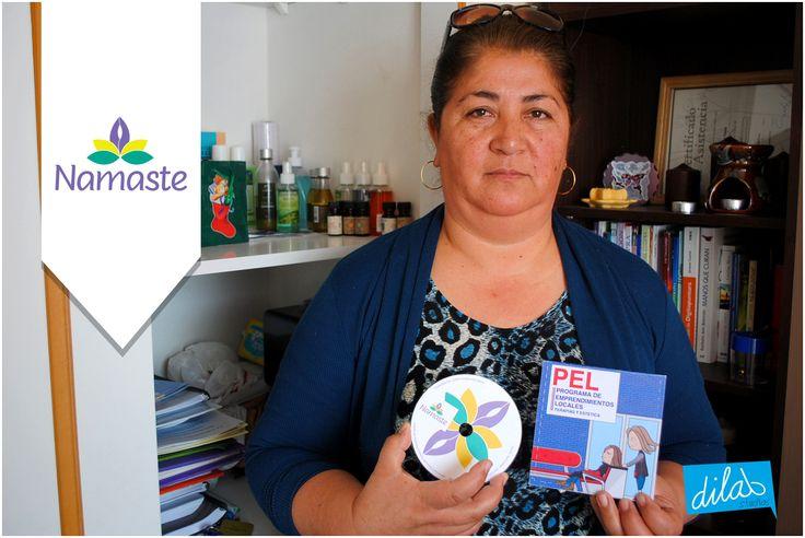 Participante: Virginia Muñoz Diseña : Raul Toledo  Ejecuta: Codem Consultores Administra:Camara de comercio industrias de Iquique. Cofinancia: Corfo   www.dilabstudios.com