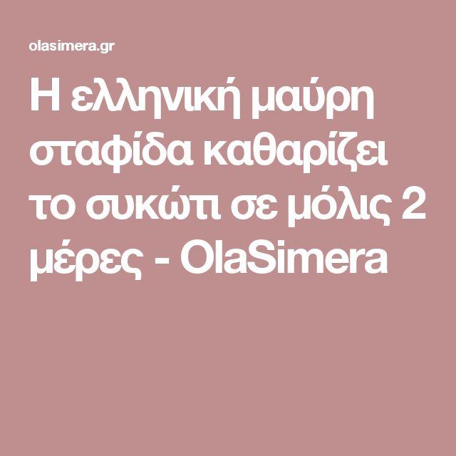 Η ελληνική μαύρη σταφίδα καθαρίζει το συκώτι σε μόλις 2 μέρες - OlaSimera