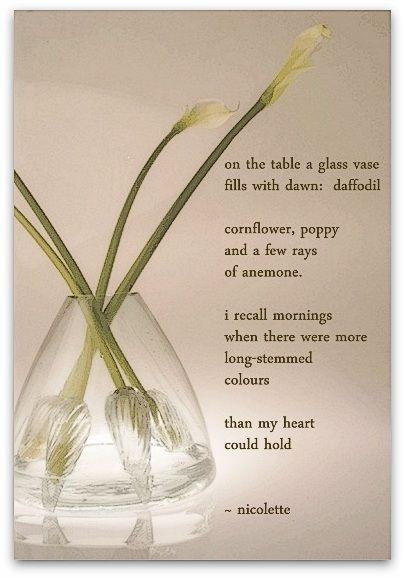 Vase © Nicolette van der Walt
