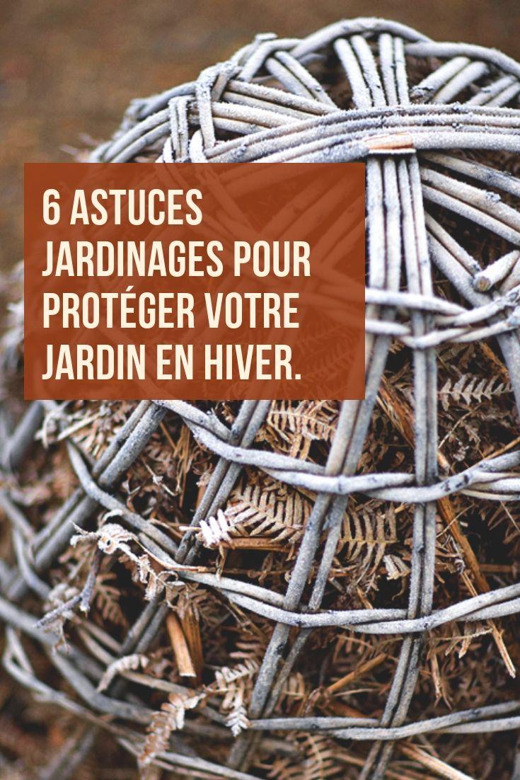 Arbre En Pot Hiver 6 astuces jardinages pour protéger votre jardin en hiver