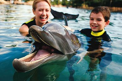 10 Best Orlando Attractions for Kids - Family Vacation Critic