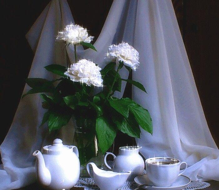 Белые розы картинки с надписью доброе утро, тебя люблю
