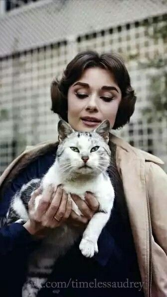 Audrey Hepburn's cat Paris 1957