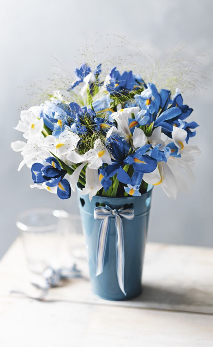 46 best Summer flowers | Waitrose images on Pinterest | Summer ...