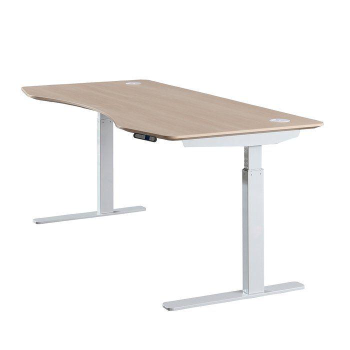 Papillion Adjustable Sit To Stand Desk Reviews Allmodern