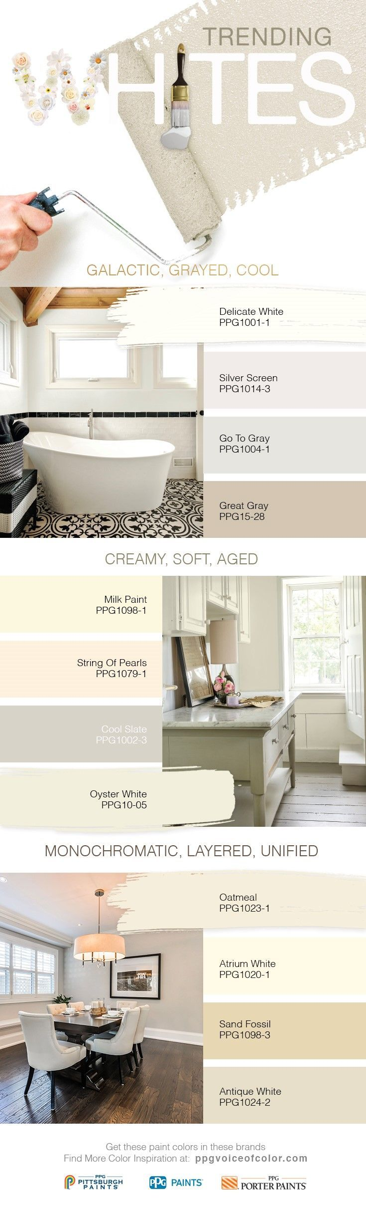 Best 25 Paint Sample Wall Ideas Only On Pinterest