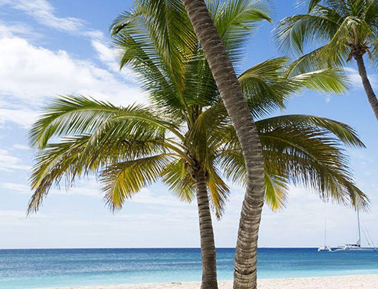 Chez Ebookers tu peux voir et réserver les meilleurs offres de vacances à l'île Maurice à prix incroyable – par exemple nuitées à l'hôtel 4 étoiles avec vol à seulement 1'010.- !  Vois ici les offres de vacances: http://www.besoin-de-vacances.ch/vacances-de-reve-lile-maurice-prix-imbattable/