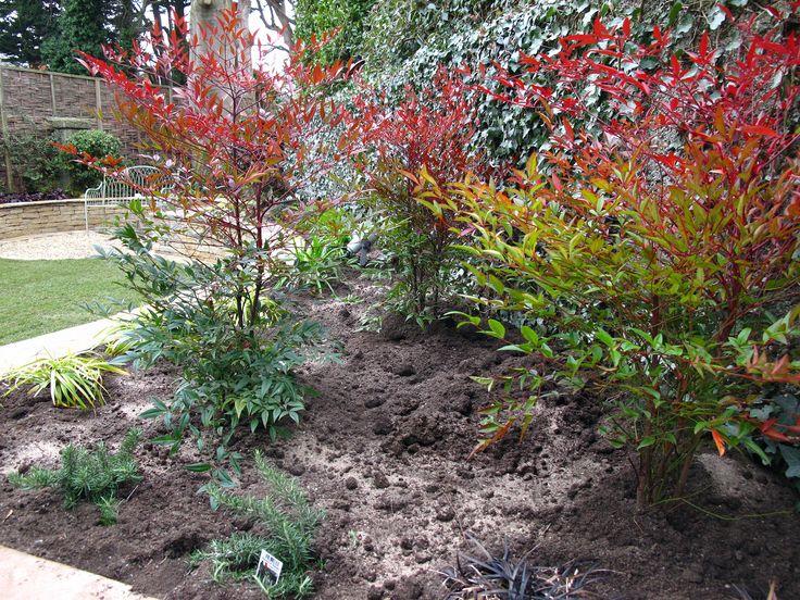 Garden Ideas Dublin 34 best design ideas for raised beds images on pinterest | raised