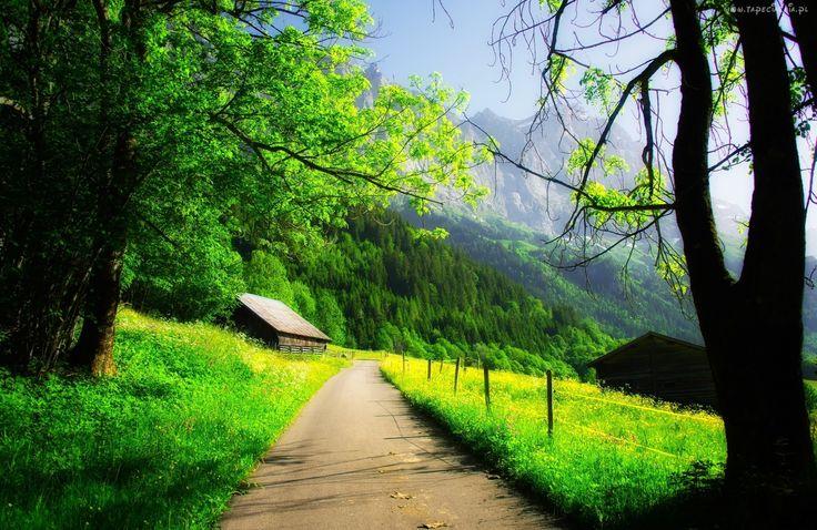 Wiejska, Droga, Domy, Góry, Wiosna