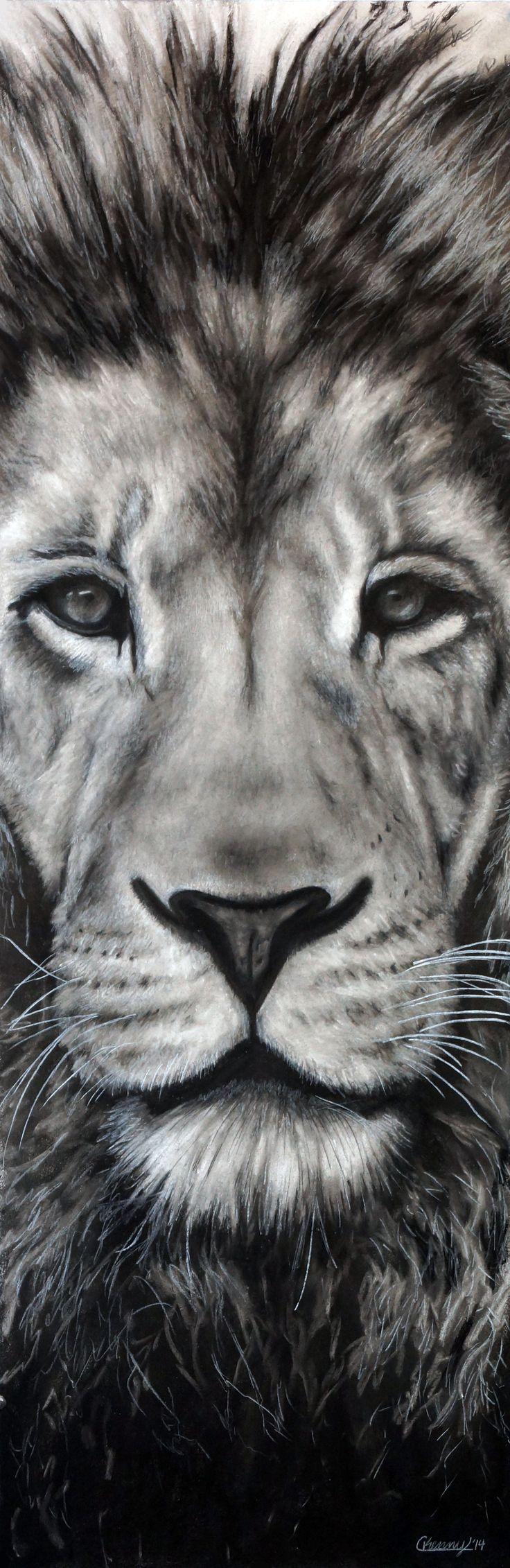 magnifique dessin réaliste d'un lion