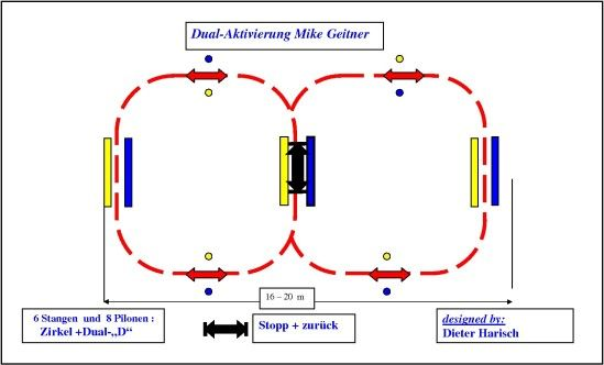 Dualaktivierung Horsemanship Westerntrail Reitunterricht