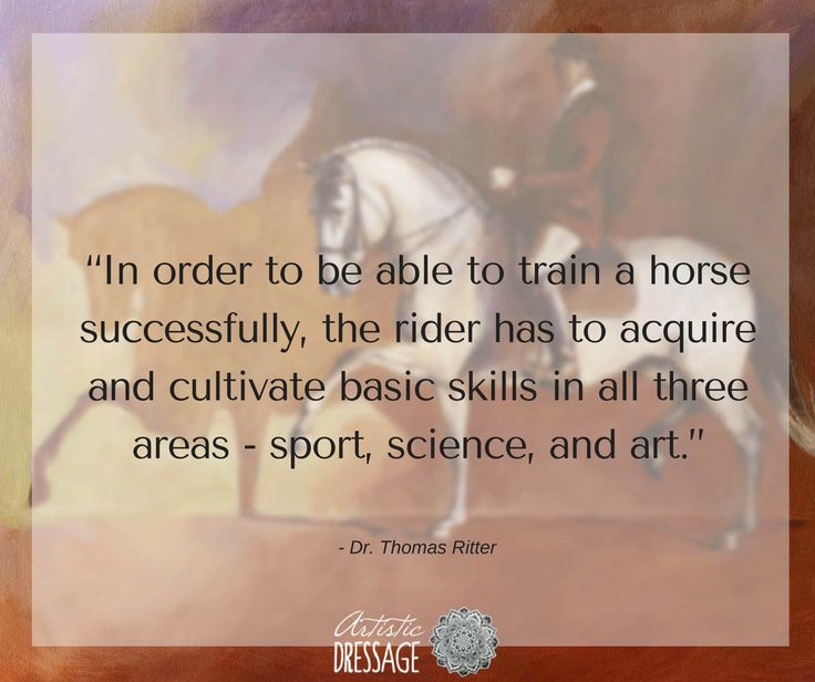 """""""In order to be able to train a horse successfully, the rider has to acquire and cultivate basic skills in all three areas - sport, science, and art."""" - Thomas Ritter www.artisticdressage.com"""