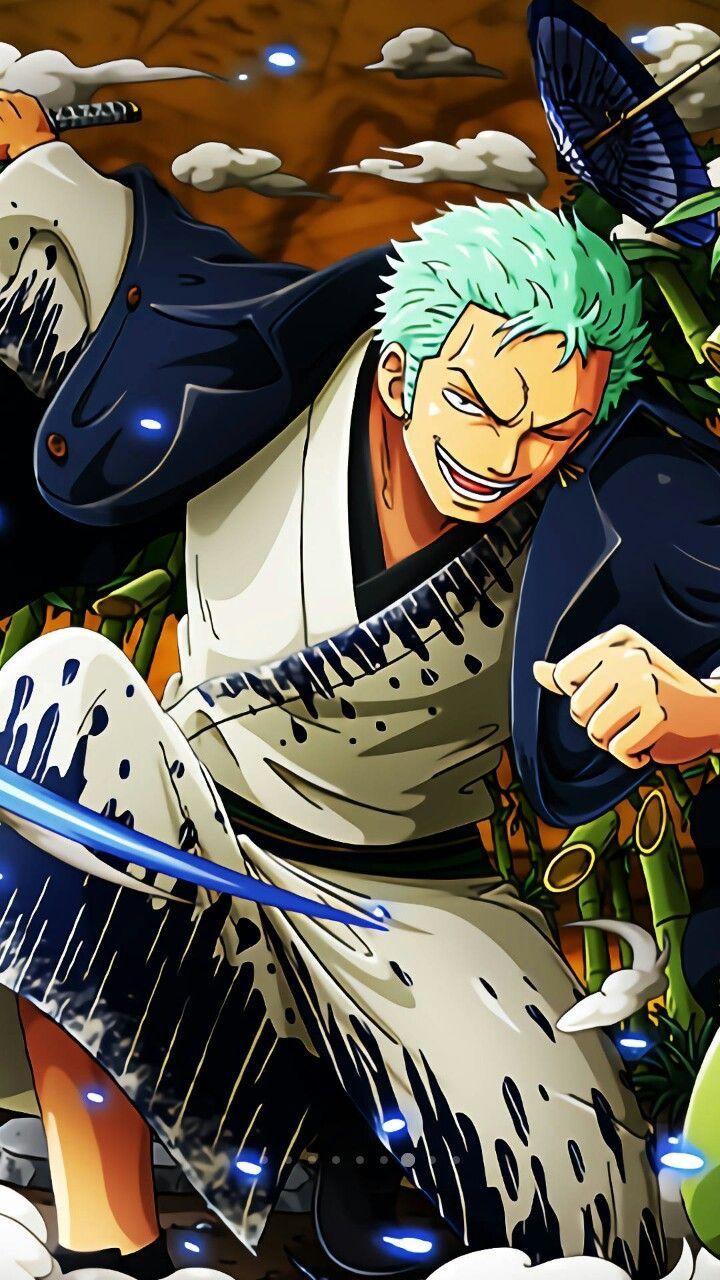 One piec Roronoa zoro, Anime one piece, Gấu xám
