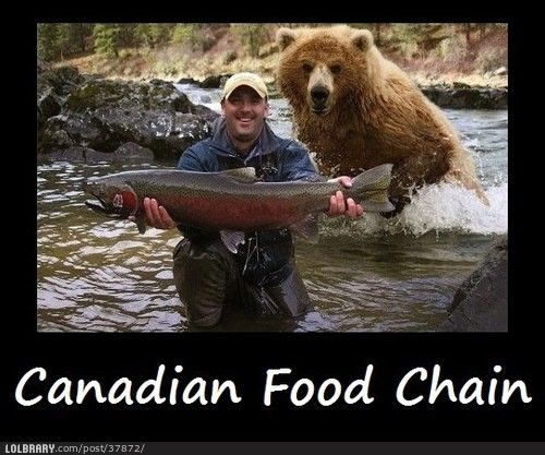 Canadian Food Chain.