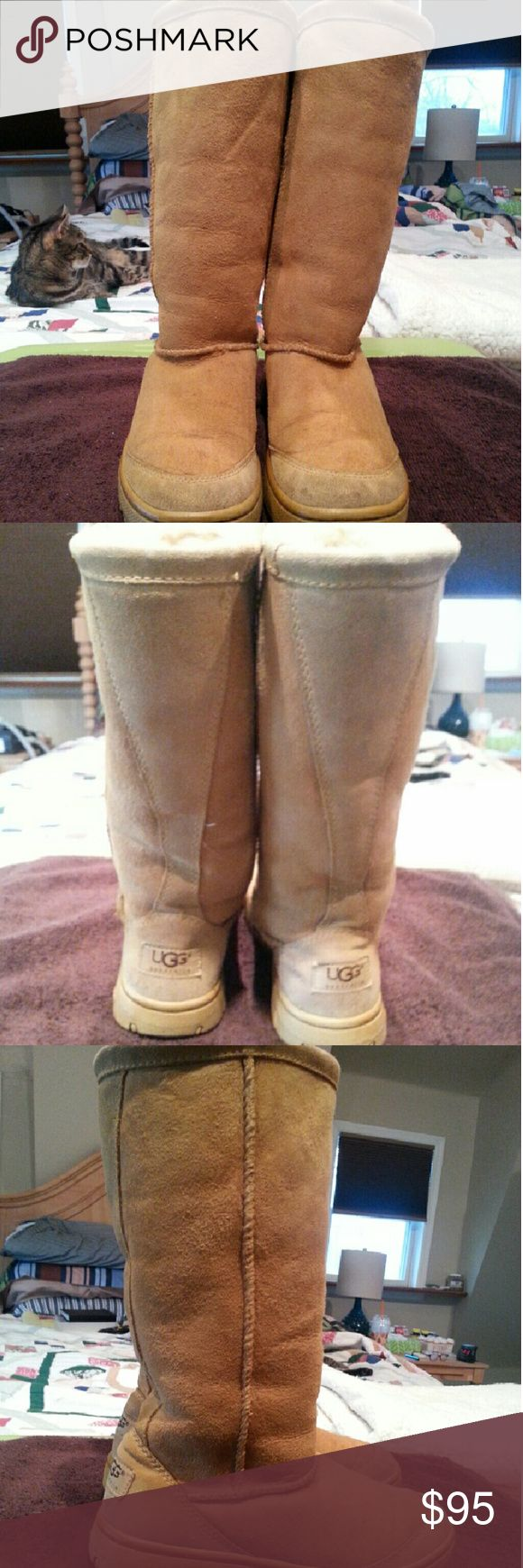 UGG AUSTRALIA TALL TAN BOOTS Gently used and professionally cleaned.  Women's size 5. Very warm and cozy! Make an offer! UGG Shoes Winter & Rain Boots