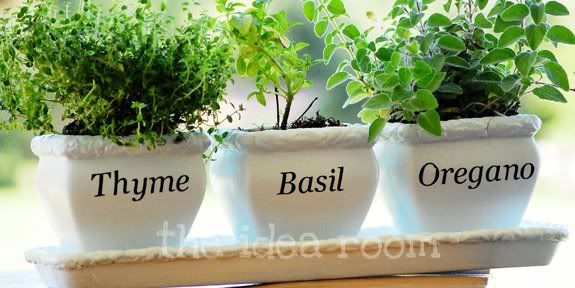 window sill herb garden for Amy & Ben.  Buy small plants over seeds to get to use it immediately.