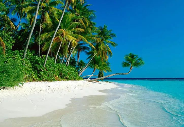 playas paradisiacas Srilanka (India sur)