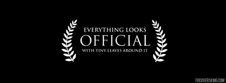 everything looks official facebook cover