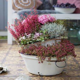 Die 25+ Besten Ideen Zu Herbst Blumentöpfe Auf Pinterest | Herbst ... Balkon Herbstlich Dekorieren Ideen
