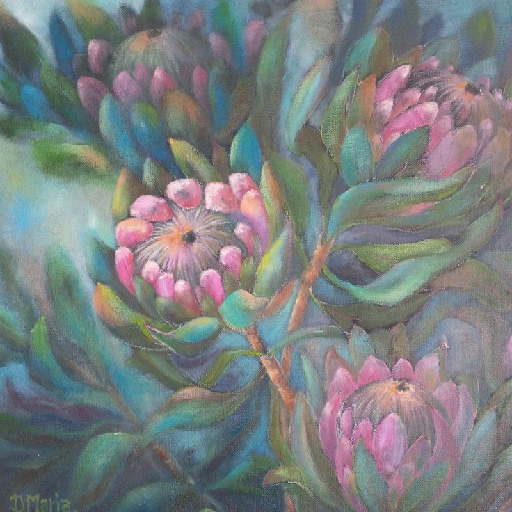 Protea flowers up in our Etsy shop!  https://www.etsy.com/listing/264369429/original-oil-painting-flowers-oil