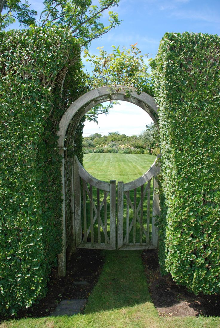 Privet Hedge | Gate in privet hedge, Nantucket