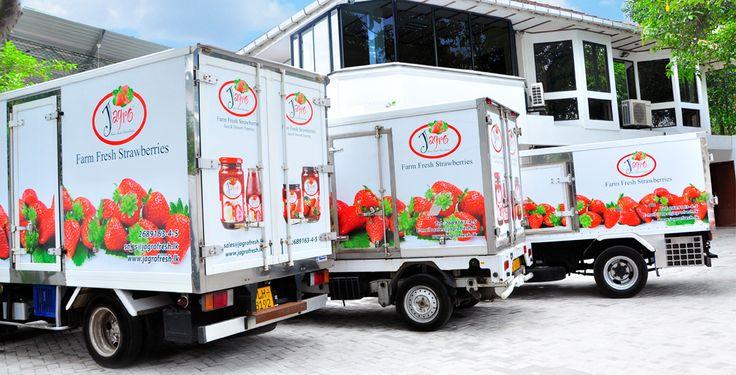 Bildergebnis für strawberry truck