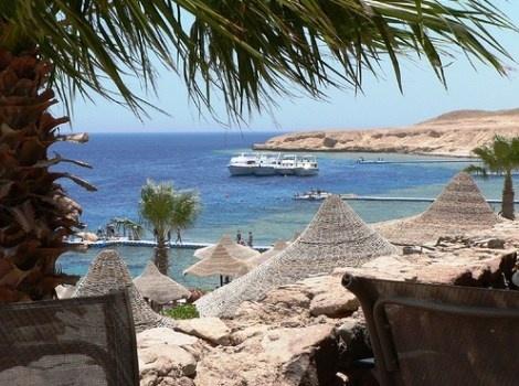 Sharm el Sheikh è la località del Mar Rosso più turistica. Qui la barriera corallina non è al meglio ma il divertimento è tanto. Gli hotel e i resort consigliati a Sharm el Sheikh. http://www.marcopolo.tv/africa/sharm-el-sheikh-guida-mar-rosso
