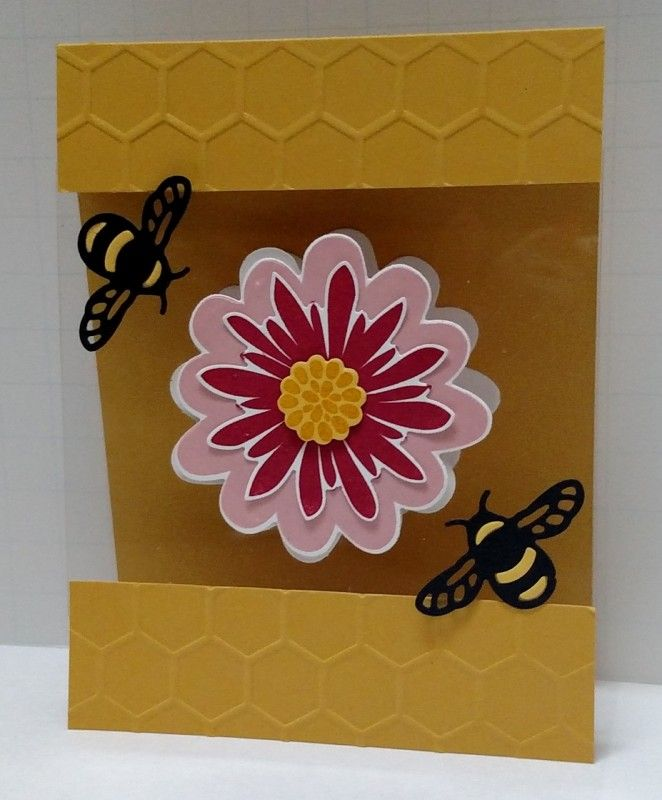 149 best cards with acetateclear card stock images on pinterest 149 best cards with acetateclear card stock images on pinterest handmade cards homemade cards and diy cards m4hsunfo