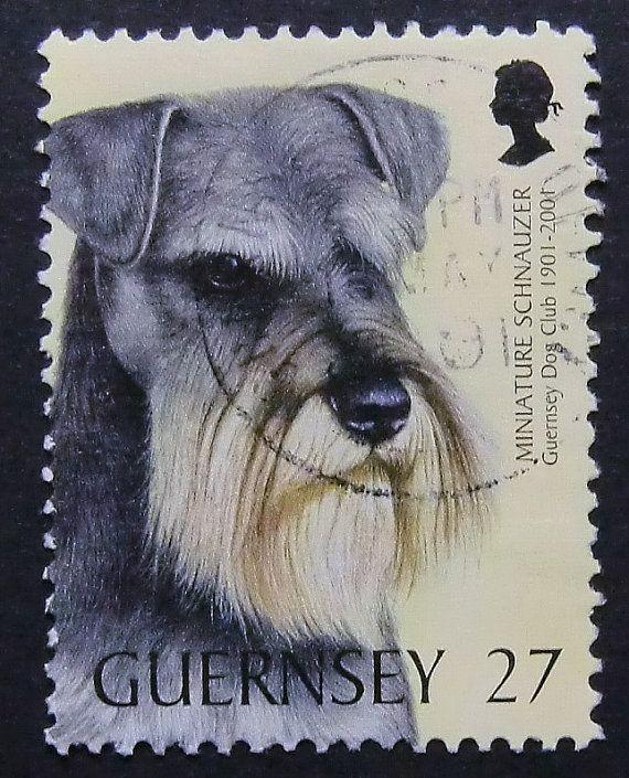 Miniature Schnauzer Dog Handmade Framed Postage Stamp Art  #miniatureschnauzer #dogs