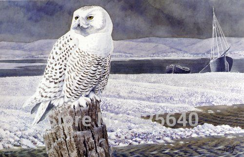 Tunnicliffe_-_A_Snowy_Owl,_Anglesey
