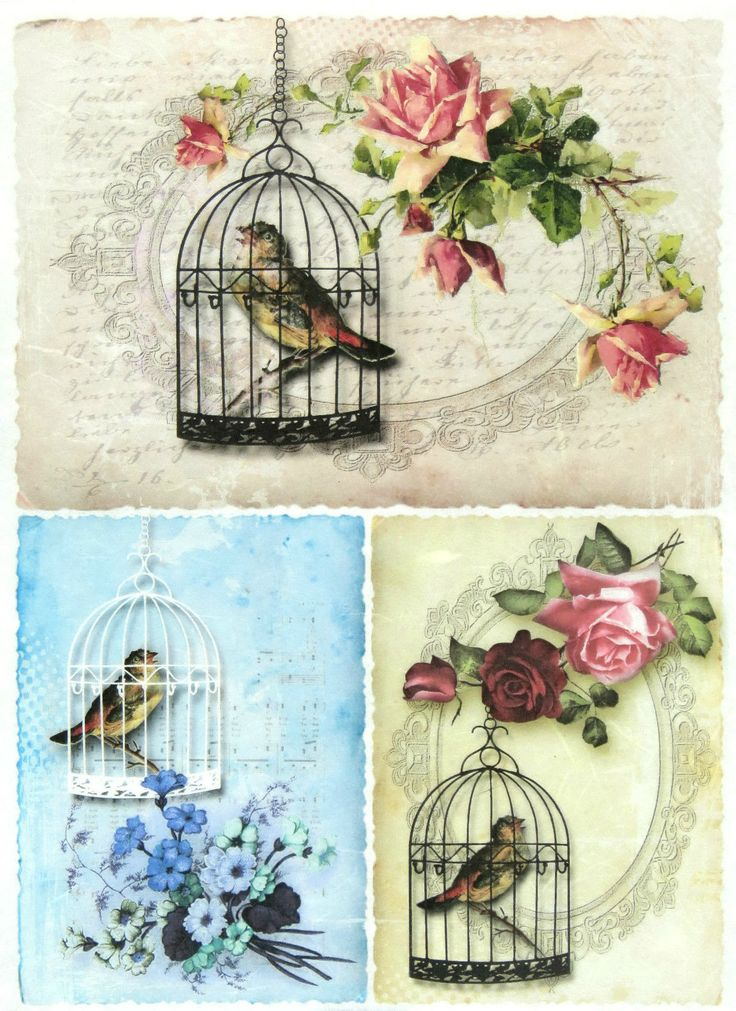 Ricepaper/ Decoupage paper, Scrapbooking Sheets /Craft Paper Birdcages | eBay