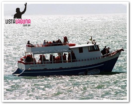 Observação de Baleias (Whalewatching) | Lista Laguna
